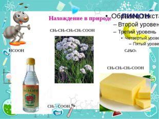 Нахождение в природе HCOOH CH3 - COOH CH3-CH2-CH2-CH2 COOH CH3-CH2-CH2-COOH