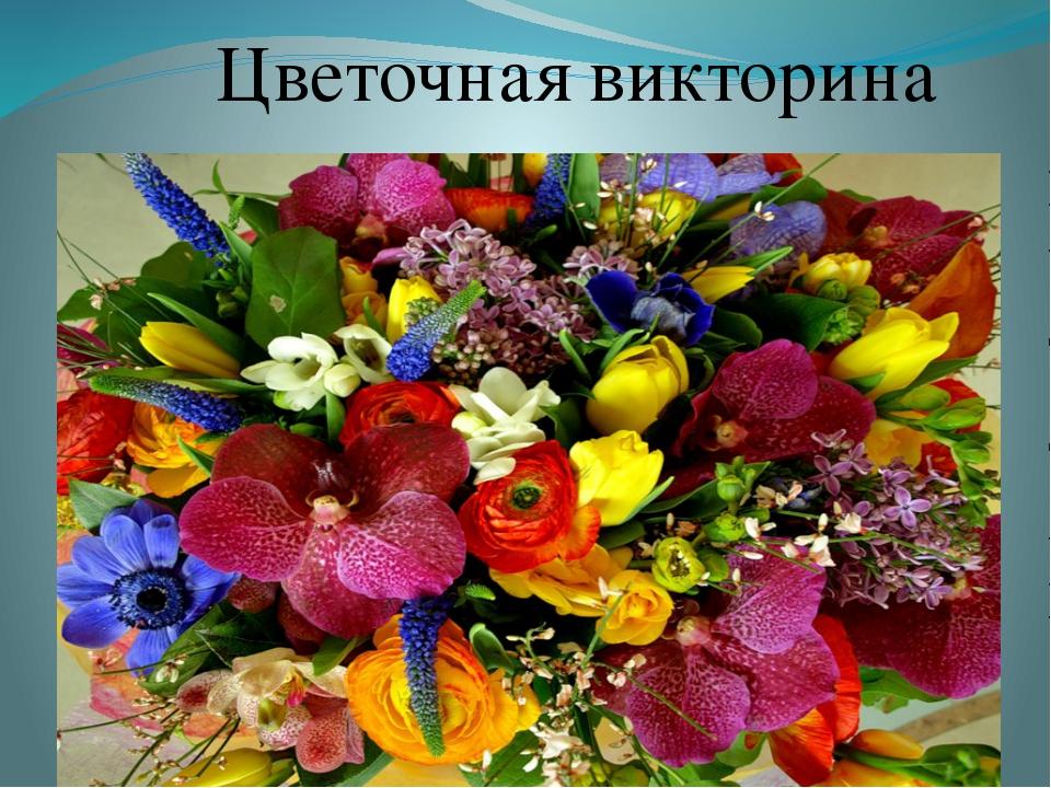 помощью презентация картинок цветов успели дойти