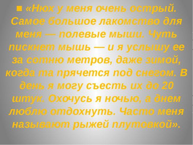 ■ «Нюх у меня очень острый. Самое большое лакомство для меня — полевые мыши....