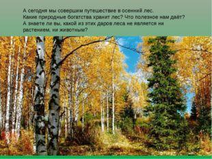А сегодня мы совершим путешествие в осенний лес. Какие природные богатства хр