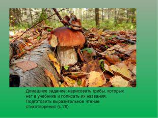 Домашнее задание: нарисовать грибы, которых нет в учебнике и пописать их назв