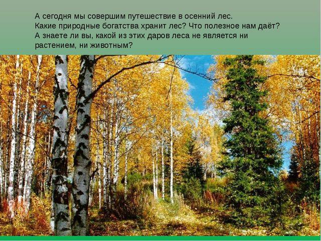 А сегодня мы совершим путешествие в осенний лес. Какие природные богатства хр...