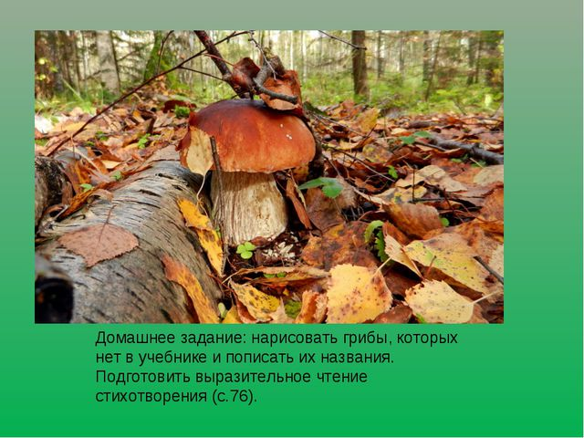 Домашнее задание: нарисовать грибы, которых нет в учебнике и пописать их назв...