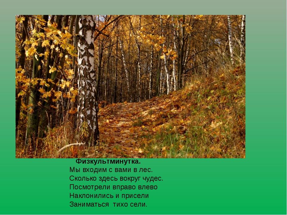 Физкультминутка. Мы входим с вами в лес. Сколько здесь вокруг чудес. Посмо...