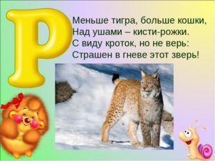 Меньше тигра, больше кошки, Над ушами – кисти-рожки. С виду кроток, но не ве