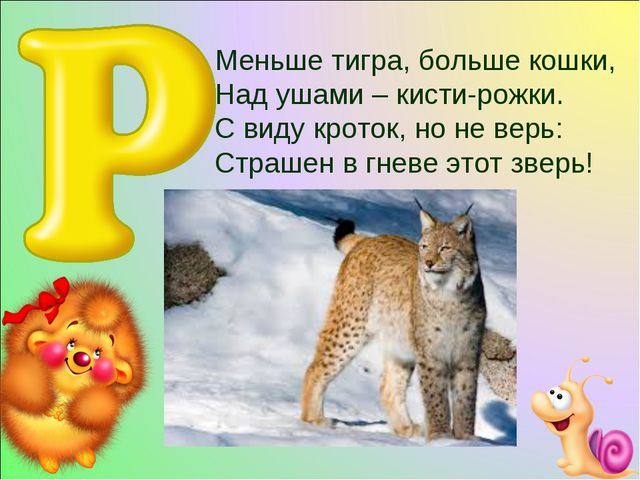 Меньше тигра, больше кошки, Над ушами – кисти-рожки. С виду кроток, но не ве...