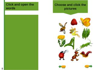 Choose and click the pictures Click and open the words grass dandelion caterp