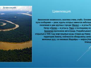 Цивилизация. Амазонская низменность заселена очень слабо. Основные пути сообщ