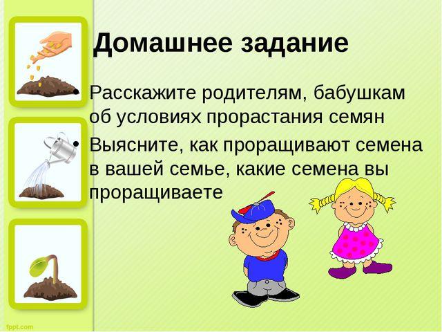 Домашнее задание Расскажите родителям, бабушкам об условиях прорастания семян...