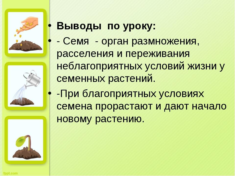 Выводы по уроку: - Семя - орган размножения, расселения и переживания небла...