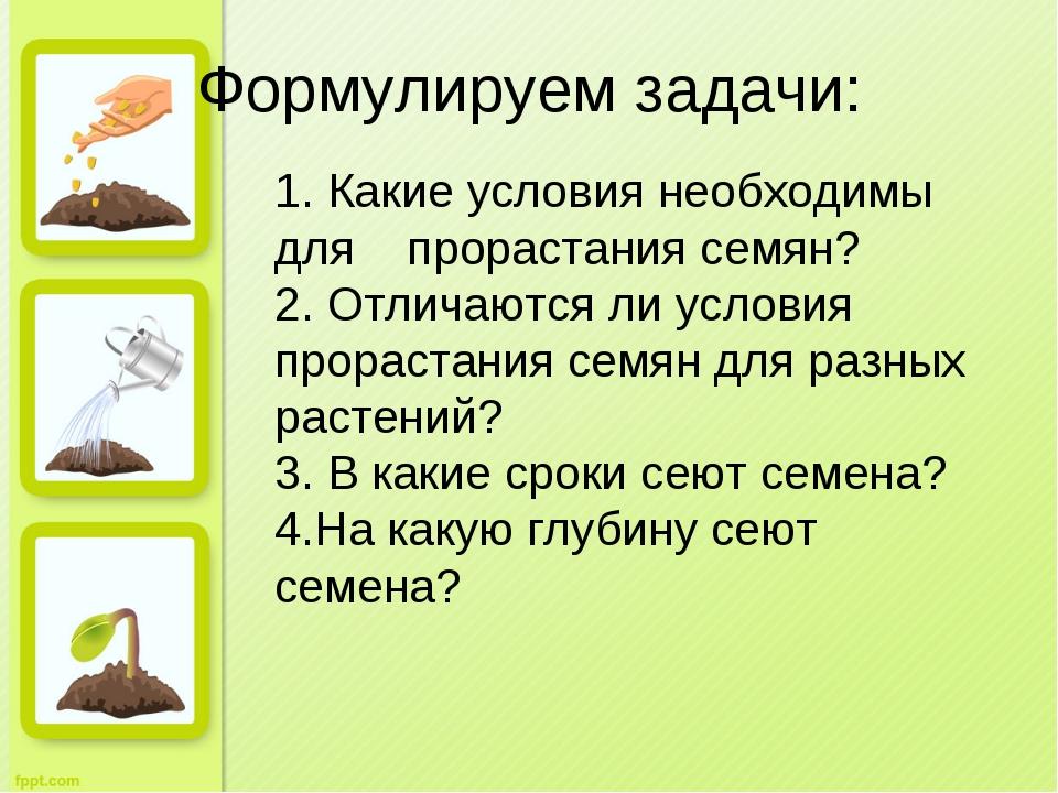 Формулируем задачи: 1. Какие условия необходимы для прорастания семян? 2. Отл...