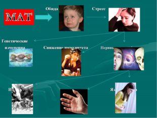 Обида Стресс Генетические изменения Снижение иммунитета Нервные расстройства
