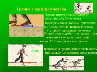 Трение в жизни человека Трение играет положительную роль при ходьбе человека