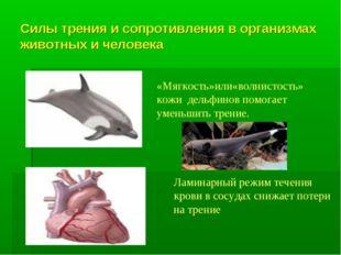 Силы трения и сопротивления в организмах животных и человека «Мягкость»или«во
