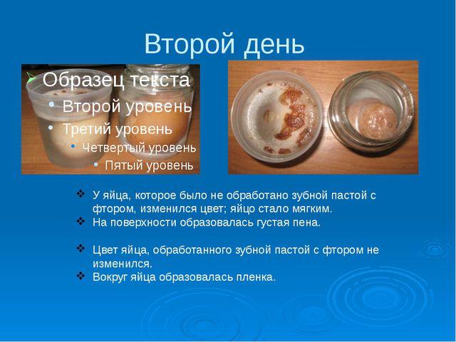 Второй день У яйца, которое было не обработано зубной пастой с фтором, измени...
