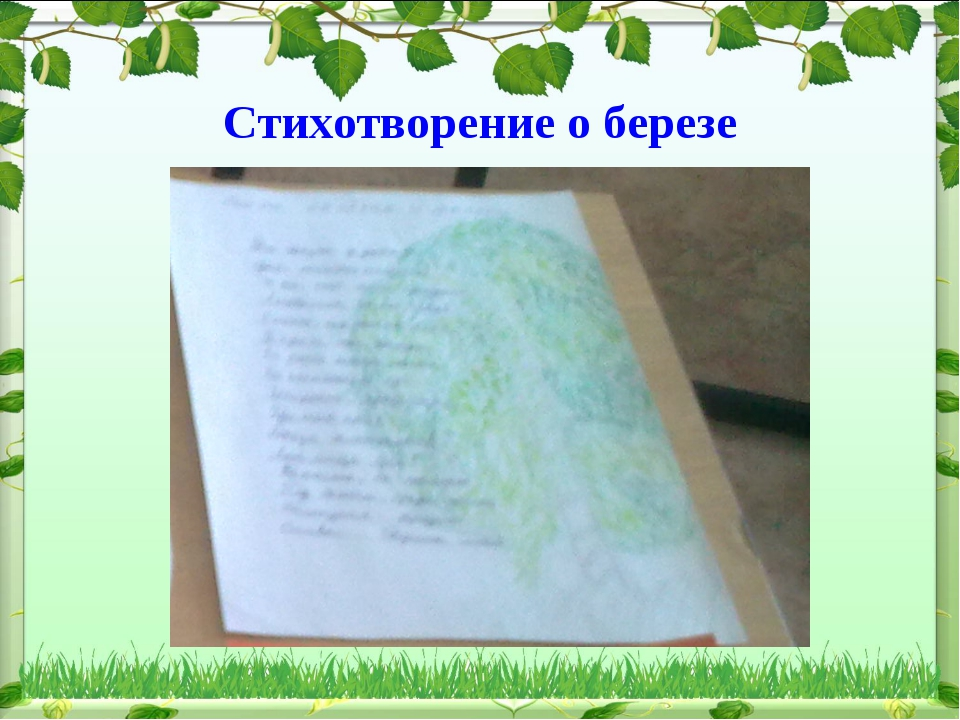 Стихотворение о березе