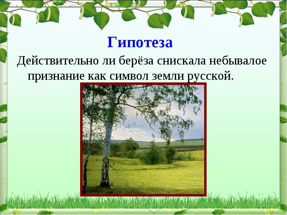 Гипотеза Действительно ли берёза снискала небывалое признание как символ земл...