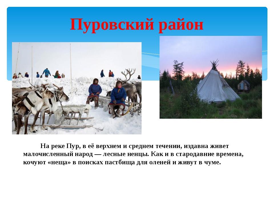 Пуровский район На реке Пур, в её верхнем и среднем течении, издавна живет ма...