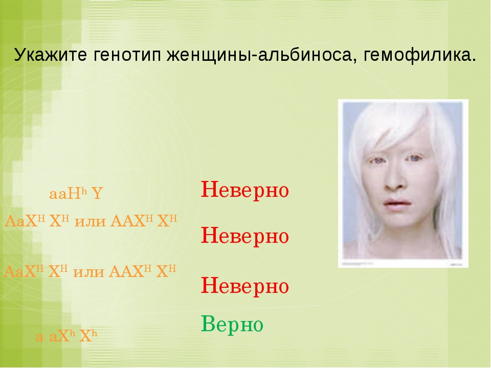Укажите генотип женщины-альбиноса, гемофилика. a aXh Xh Верно aaHh Y Неверно...