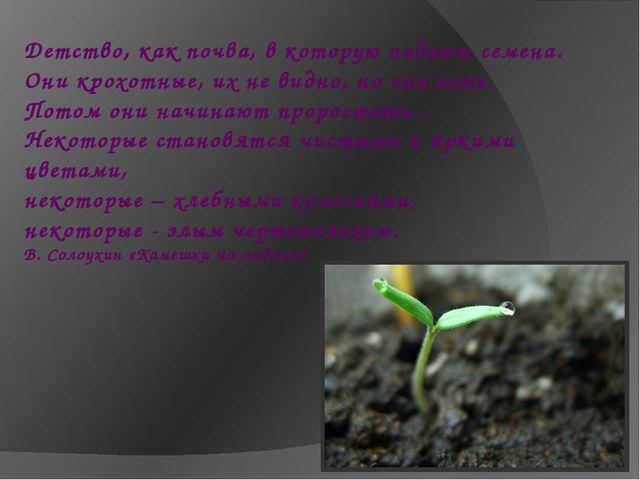 Детство, как почва, в которую падают семена. Они крохотные, их не видно, но о...