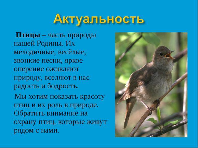 Птицы – часть природы нашей Родины. Их мелодичные, весёлые, звонкие песни, я...
