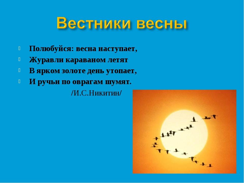 Полюбуйся: весна наступает, Журавли караваном летят В ярком золоте день утопа...