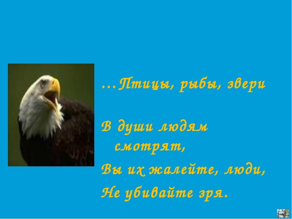 …Птицы, рыбы, звери В души людям смотрят, Вы их жалейте, люди, Не убивайте зря.