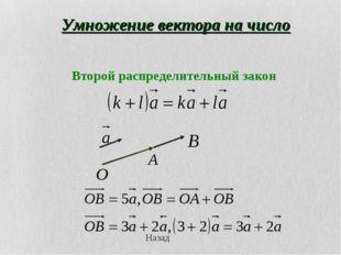 Умножение вектора на число Назад
