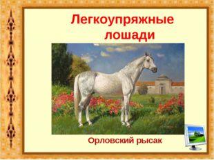 Легкоупряжные лошади Орловский рысак