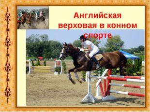 Английская верховая в конном спорте