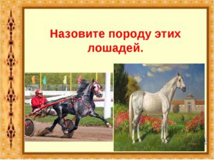Назовите породу этих лошадей. Орловский рысак.
