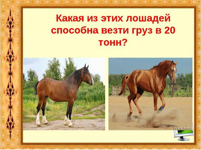 Какая из этих лошадей способна везти груз в 20 тонн? Владимирский тяжеловоз