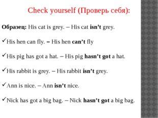 Check yourself (Проверь себя): Образец: His cat is grey. – His cat isn't grey