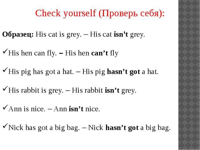 Check yourself (Проверь себя): Образец: His cat is grey. – His cat isn't grey...