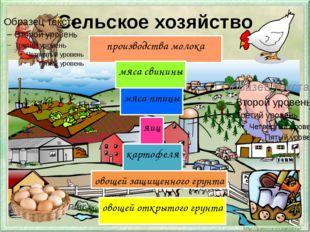 Сельское хозяйство производства молока мяса свинины мяса птицы яиц картофеля
