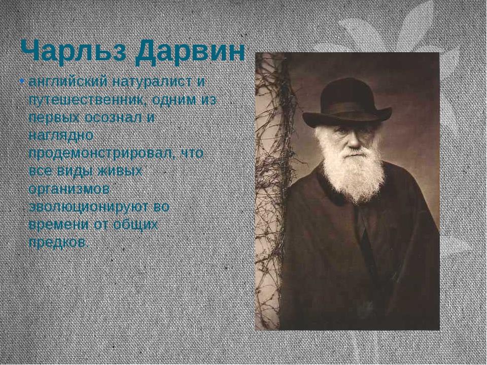 Чарльз Дарвин английский натуралист и путешественник, одним из первых осознал...
