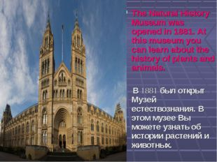 The Natural History Museum was opened in 1881. At this museum you can learn