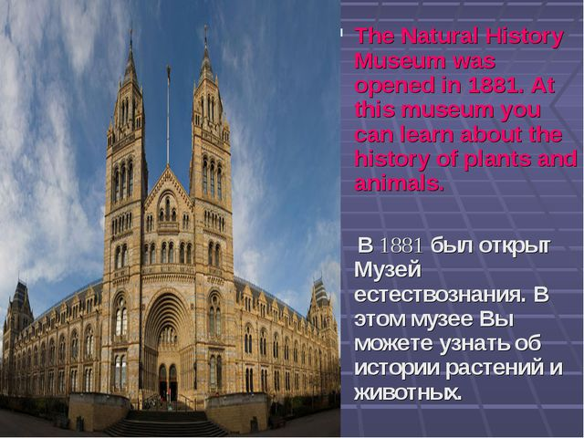 The Natural History Museum was opened in 1881. At this museum you can learn...