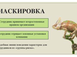 МАСКИРОВКА Сотрудник принимает второстепенные правила организации Сотрудник о