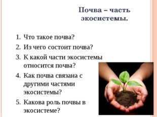 Почва – часть экосистемы. Что такое почва? Из чего состоит почва? К какой час