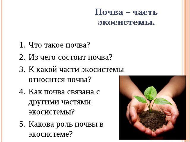 Почва – часть экосистемы. Что такое почва? Из чего состоит почва? К какой час...