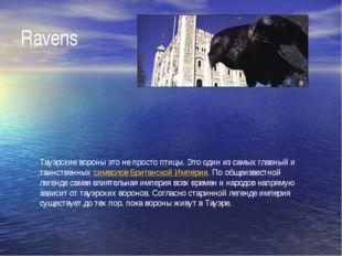 Ravens Тауэрские вороны это не просто птицы. Это один из самых главный и таин
