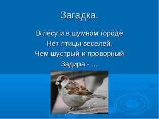 Загадка. В лесу и в шумном городе Нет птицы веселей, Чем шустрый и проворный