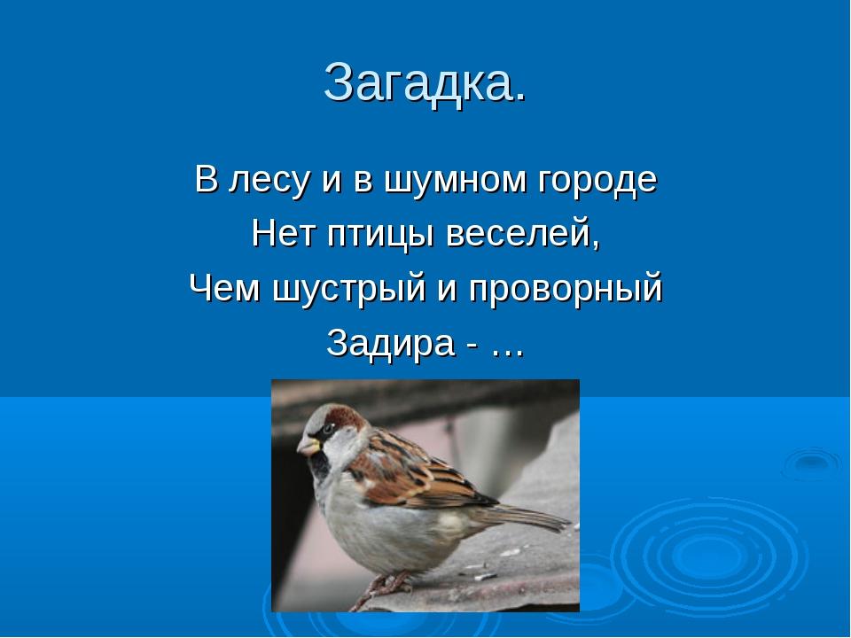 Загадка. В лесу и в шумном городе Нет птицы веселей, Чем шустрый и проворный...