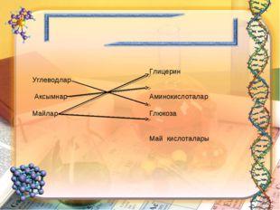 Углеводлар Аксымнар Майлар Глицерин Аминокислоталар Глюкоза Май кислоталары