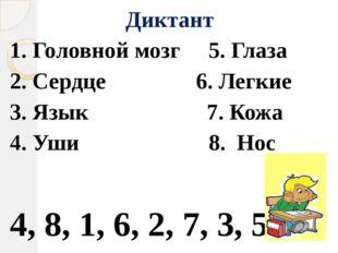 Диктант 1. Головной мозг 5. Глаза 2. Сердце 6. Легкие 3. Язык 7. Кожа 4. Уши