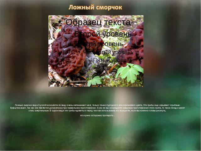 Ложные сморчки вида Gyromitra esculenta по виду очень напоминают мозг, тольк...