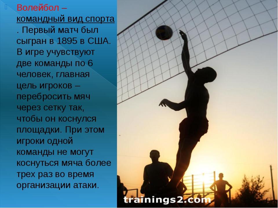 Волейбол–командный вид спорта. Первый матч был сыгран в 1895 в США. В игре...