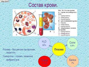 Состав крови. Плазма – бесцветная прозрачная жидкость. Сыворотка – плазма, ли