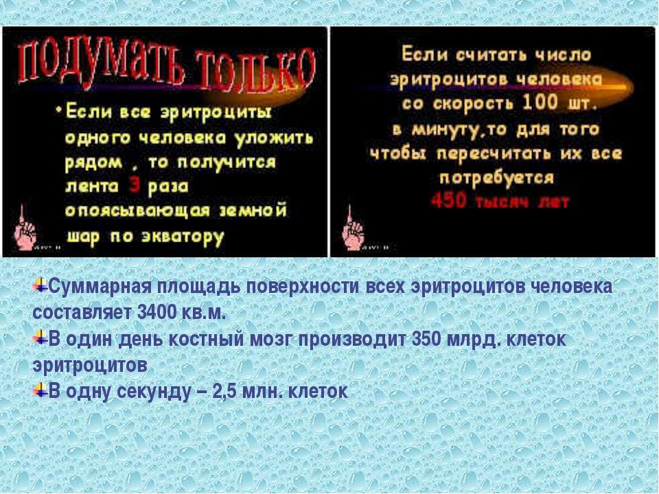 Суммарная площадь поверхности всех эритроцитов человека составляет 3400 кв.м....